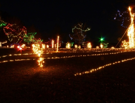 Holiday lights, Anderson lights of hope - Where To See Christmas Light Shows In Greater Greenville