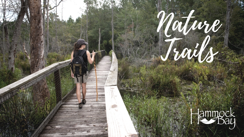 Hammock Bay Nature Trails.