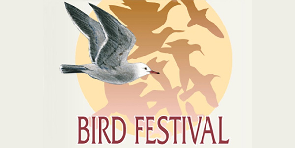 San Diego Bird Festival