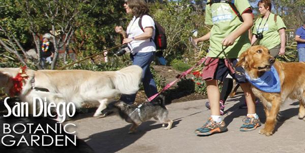 San Diego Botanic Garden Paw Walk 5k