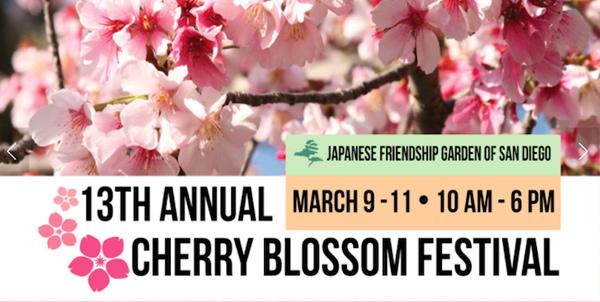 cherry blossom festival San Diego japanese garden