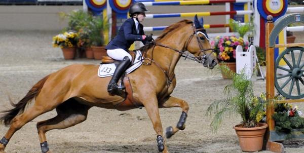 Del Mar Horse Show