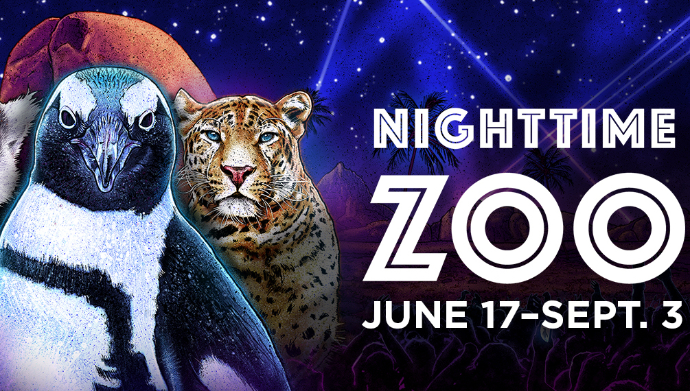 NightTimeZoo at San Diego Zoo Poster
