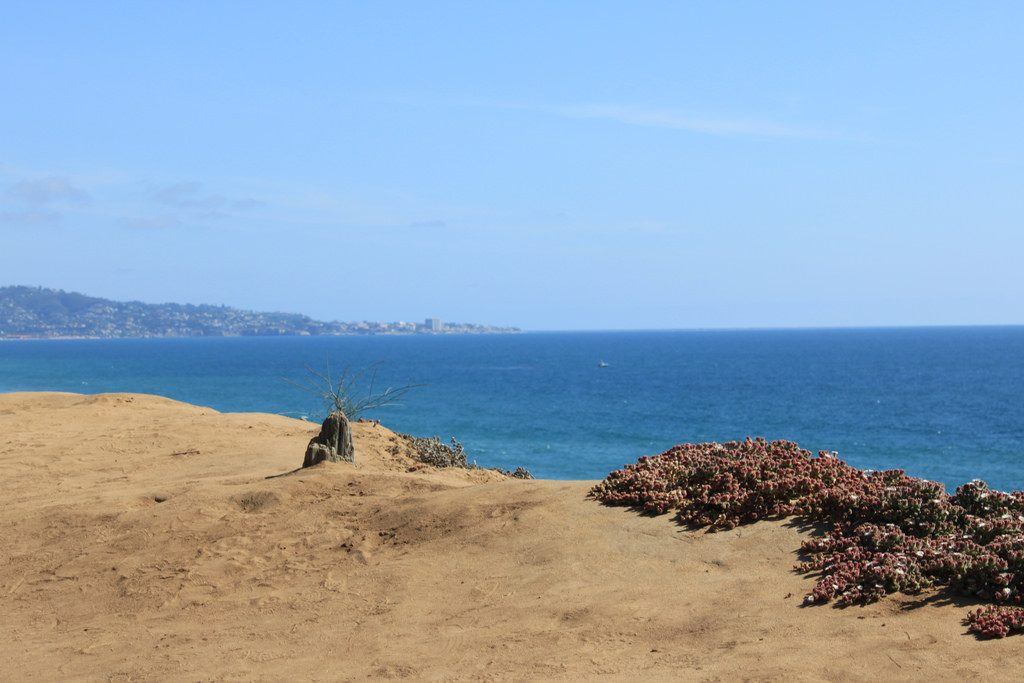 Del Mar ocean view