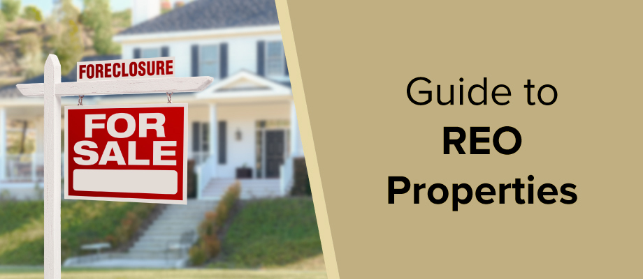 Guide to REO Properties