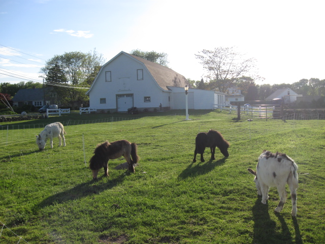 Why Swansea Ma Is A Great Place To Live Coastal Rhode Island And