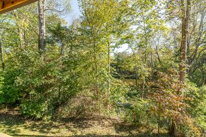 Abingdon VA Houses with River View for Sale