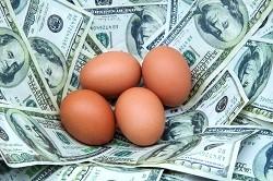 egg blog
