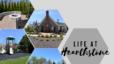 Community Highlight: Hearthstone