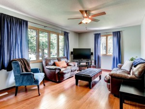 6465 Pineview Ln N Maple Grove-MLS_Size-006-6-Living Room-1024x768-72dpi