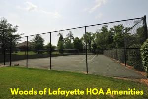 wol tennis text