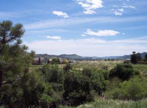 Thornton, CO Real Estate