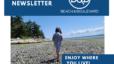 Beach & Blvd Newsletter