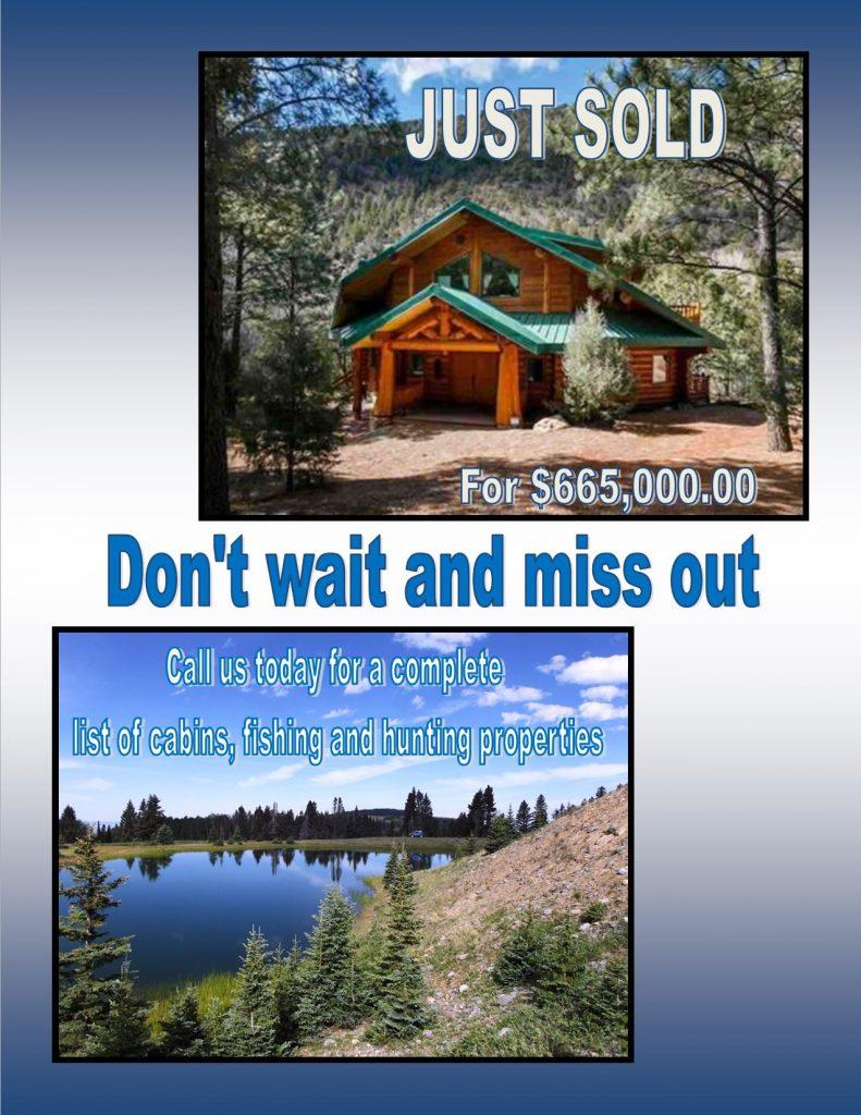cabin-sold-flier
