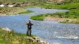 BEST FLY FISHING VALUE in Northern New New Mexico Real Estate
