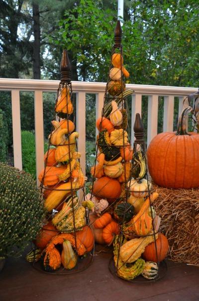 Trellises-Gourds-Pumpkins