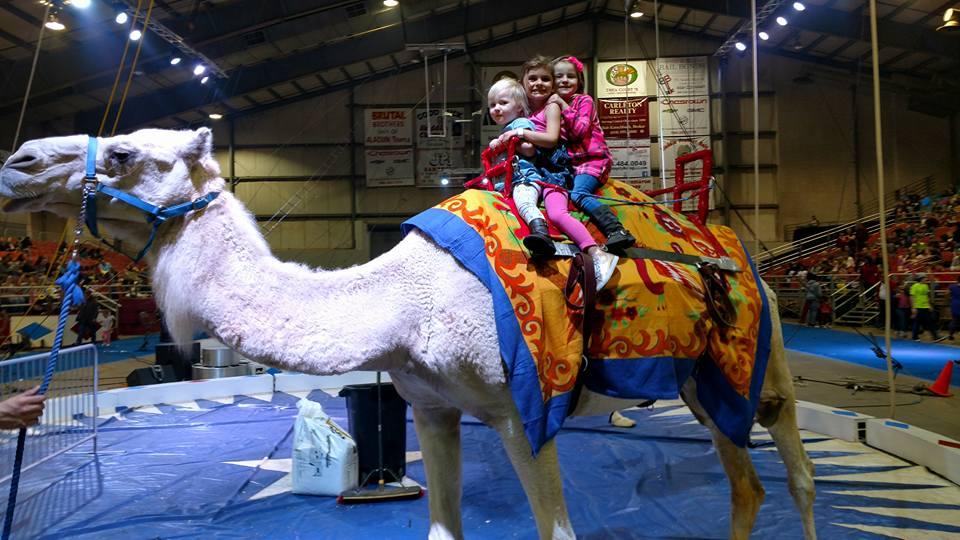 Kids on Camels