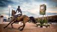Florida's Top Equestrian Communities