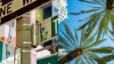 Tampa – The No. 1 Relocation Destination For A Reason!