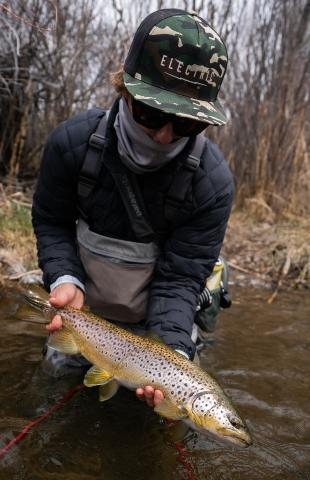 East Walker Brown Trout With Fly Fishing Guide Tom Lippen