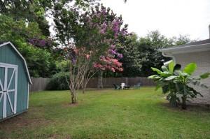 Backyard at 880 Quail Drive