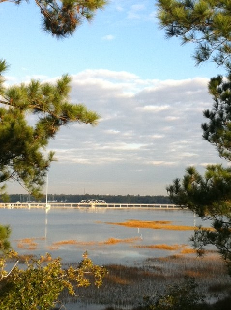 Views of the Wando from 2785 Oak Manor