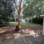 Backyard at 841 Armsway Street