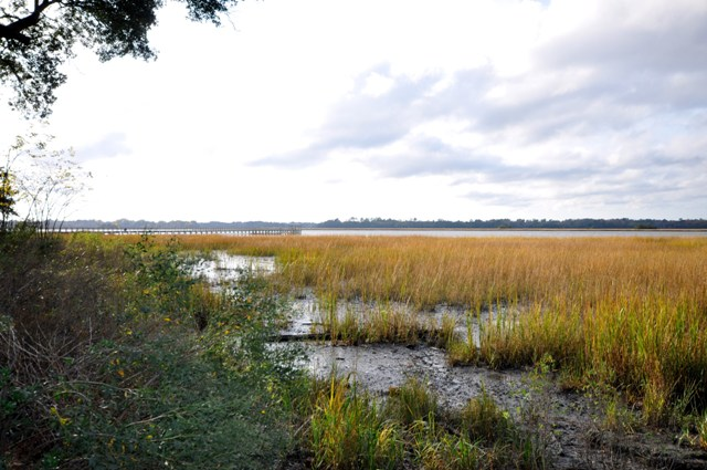 Views of the Ashley River near Lowndes Grove