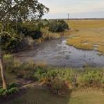 Marshfront views from 2002 Gull