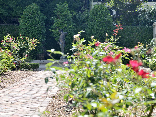 Garden at 27 Lamboll Street