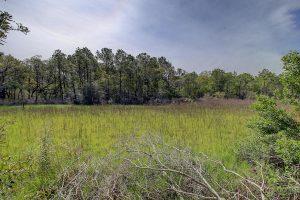 Marsh views at 1466 River Road
