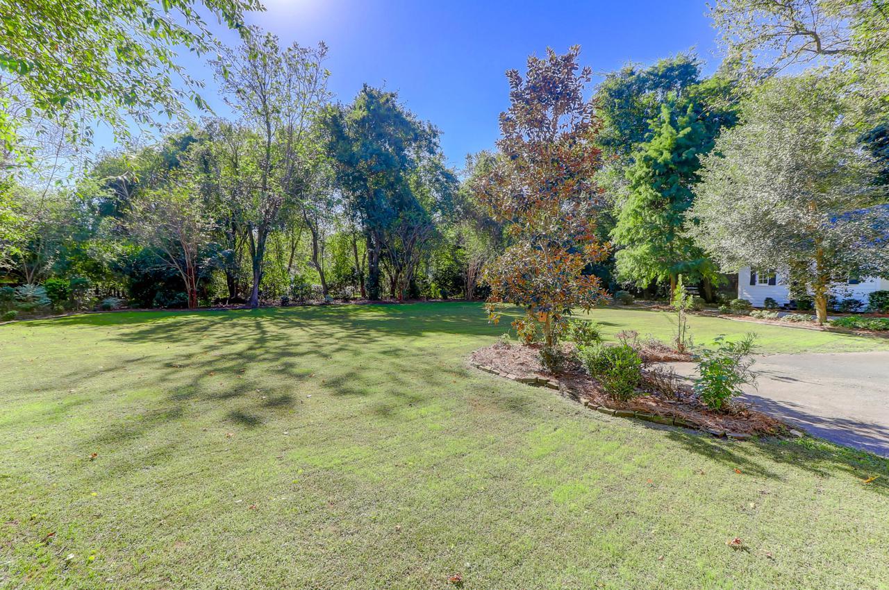 131 Linwood backyard