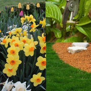 springplanting-page-001