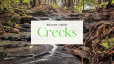 Brushy Creek Parks & Creeks