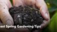 Northeast Spring Gardening Tips