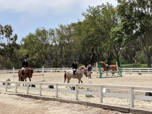 Rolling Hills Estates equestrian neighborhood