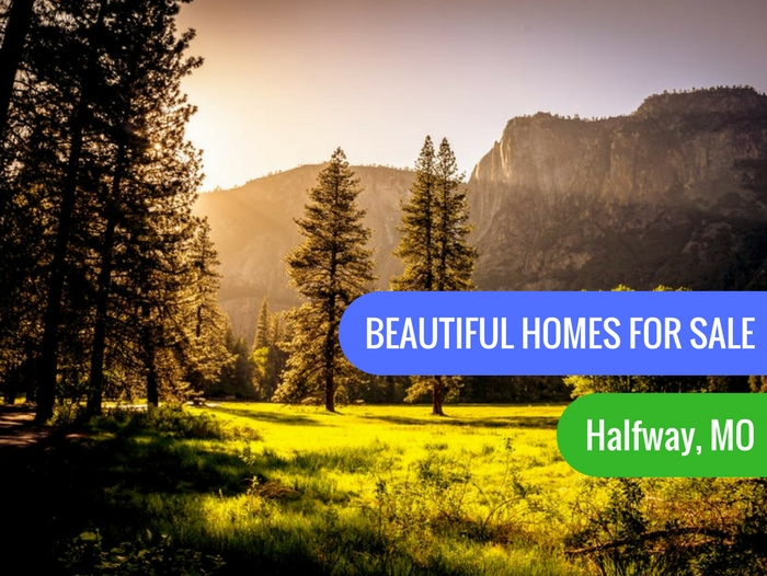 Homes For Sale in Halfway, Missouri - Springfield Area's ...