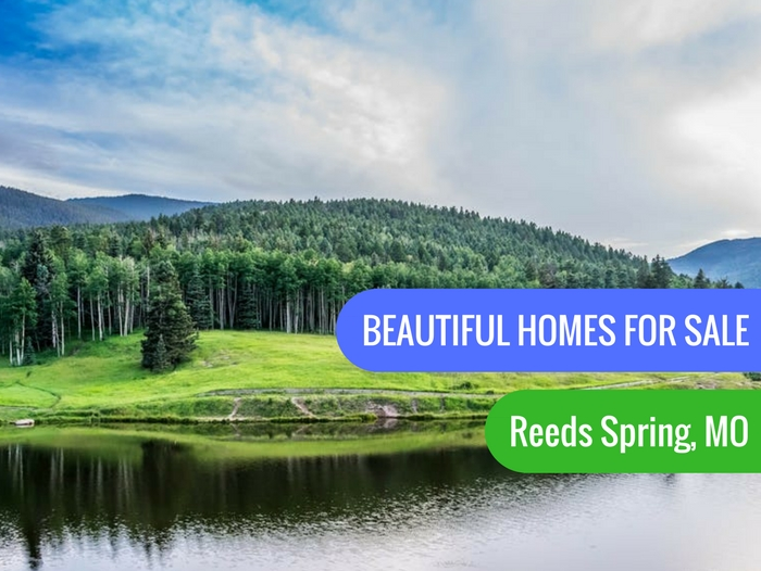 Reeds Spring Homes For Sale
