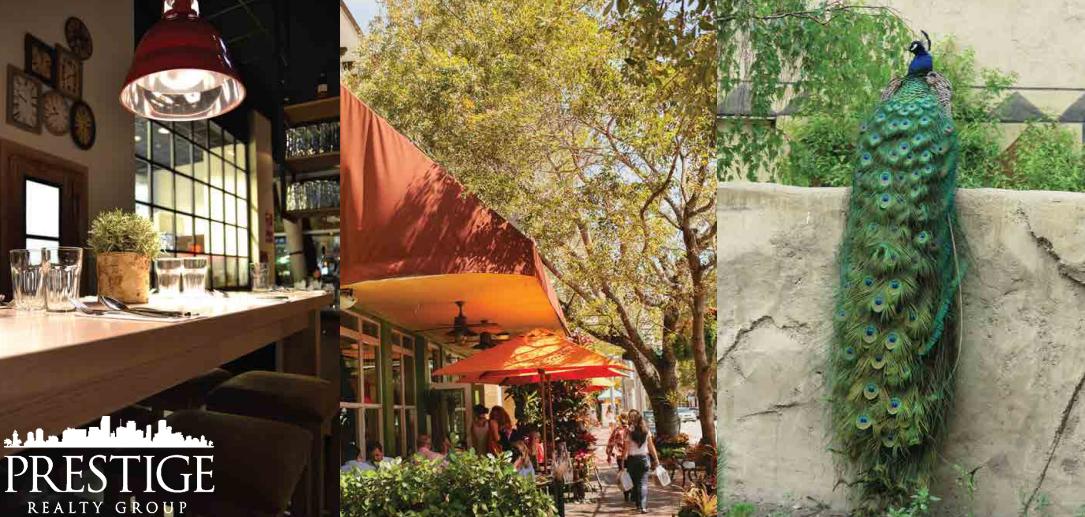 Coconut Grove Lifestyle - Miami, FL - Prestige Realty Group