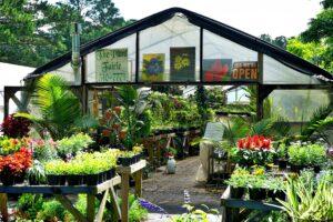 Fairhope Plant Nursery