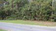 New Residential Plot of Land Now Available in Daphne!