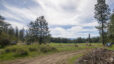 13011 E Nelson Rd, Elk WA 99009: 10 Beautiful Acres in Elk Wa