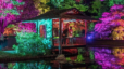 The RVA Group's Photo of the Day: Garden Glow!