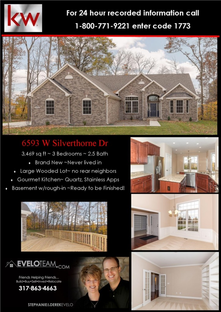 6593 W Silverthorne Dr McCordsville IN Home for Sale Evelo Team Flyer