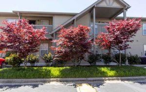Image of Regency Oaks Condominiums