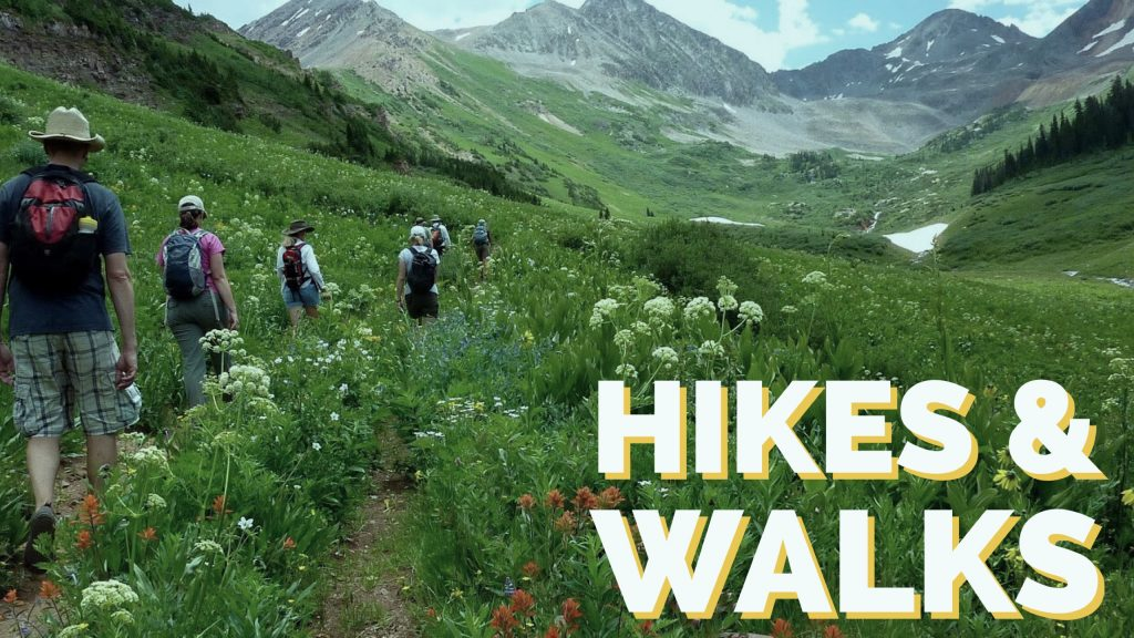 970a5a3f9 Hike   Walks Crested Butte Wildflower Festival