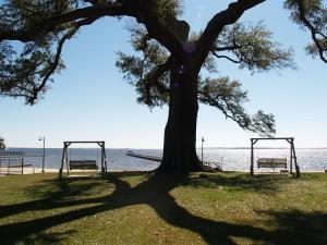 gulf-oaks-view-300x2251