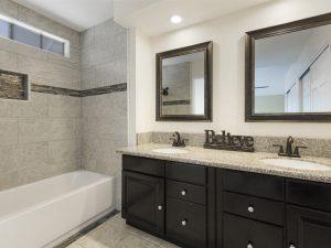 9083 Limecrest Rd. Master Bathroom | The DeBonis Team
