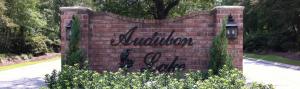 Audubon Lake Mandeville LA
