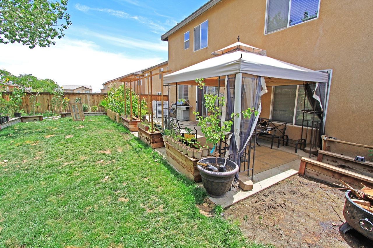 28 Backyard 1